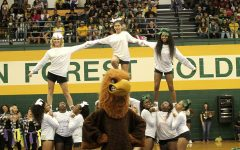 Klein Forest Cheerleaders Homecoming Spirit