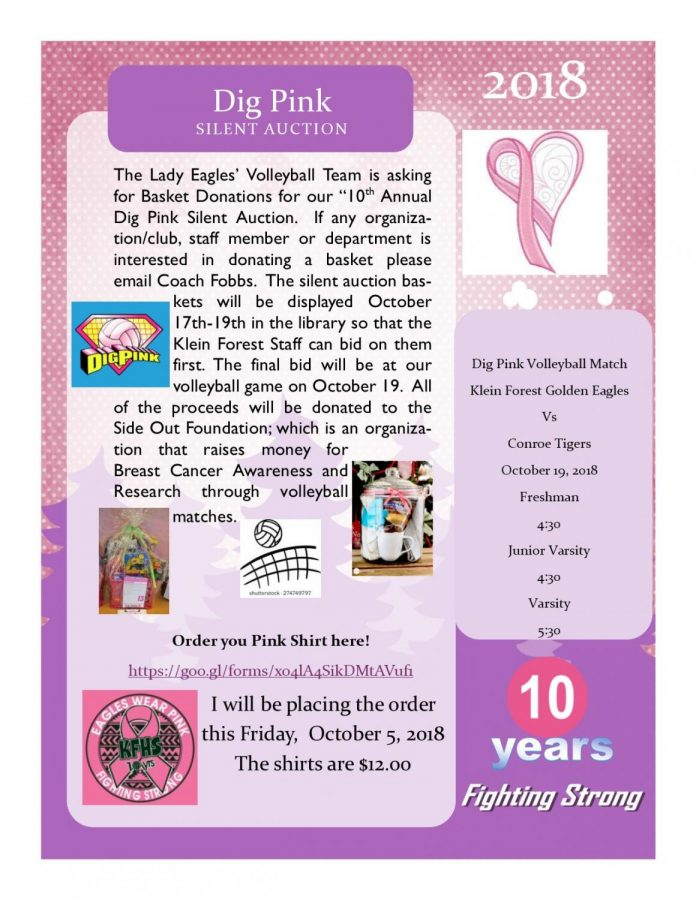Dig Pink Silent Auction